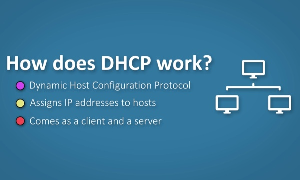 How Does IP Address DHCP Command Work