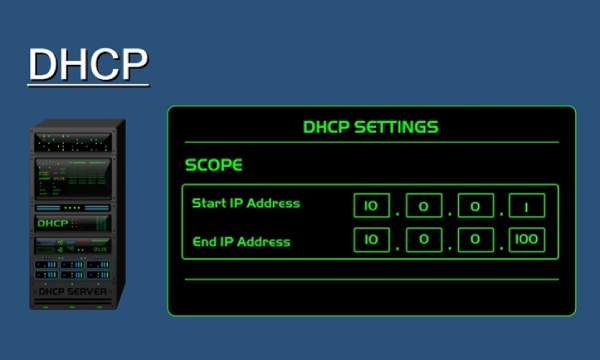 What Does The IP Address DHCP Command