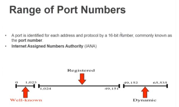 Common Port Numbers